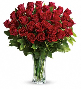 Love and Devotion PM - 36 Long Stemmed Red Roses