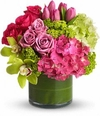 New Sensations with Roses and Orchids