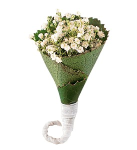 Rolled Gypsophila Boutonniere
