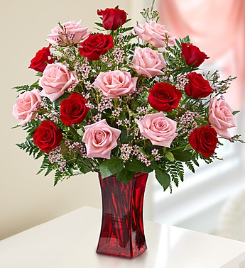 Shades of Pink and Red Premium Long Stem Roses