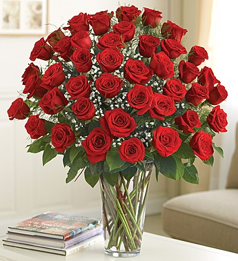 Ultimate Elegance 48 Premium Long Stem Red Roses