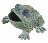 Bronze Croaking Toad