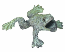 Croaking Bronze Frog