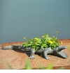 Alligator Planter Holder by SPI Home