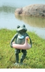 Beach Buddy Frog with Flamingo Float by SPI Home