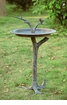 Bird & Twig Sundial Birdbath by SPI Home