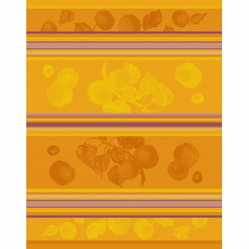 Bodrum Linens Borgetto Apricot Dish Towels 6 Pack