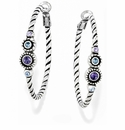 Brighton Purple Halo Hoop Earrings