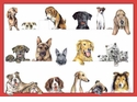 Caspari Dogs Assorted Note Cards