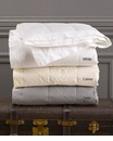 Down Inc. Endure White Queen Blanket