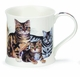 Dunoon Mug - Cats Mug - Mackerel Tabbies 10 Oz.