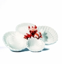 Intrada Italy 4 Shells with Coral Tray