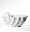 "Intrada Italy Shell Bowl White Large 15""L x 7""H"