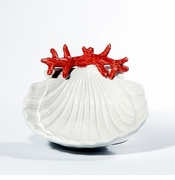 Intrada Italy Shell Ceramics Collection