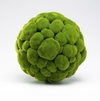 Large Moss Sphere by Cyan Design