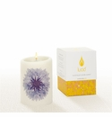 Lucid Liquid Candles -  3x4 Bachelor Button on Natural Pillar Candle