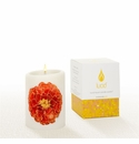 Lucid Liquid Candles -  3x4 Marigold on Natural Pillar Candle