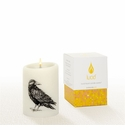 Lucid Liquid Candles -  3x4 Raven Natural Pillar Candle