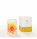 Lucid Liquid Candles -  3x4 Rose on Natural Pillar Candle