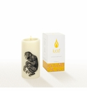Lucid Liquid Candles -  3x6 Chimpanzee Natural Pillar Candle