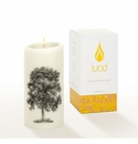 Lucid Liquid Candles -  3x6 Oak Natural Pillar Candle