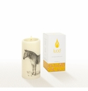 Lucid Liquid Candles -  3x6 Zebra Natural Pillar Candle