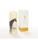 Lucid Liquid Candles -  3x8 Thoroughbred Natural Pillar Candle