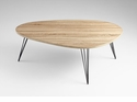 Lunar Landing Oak Coffee Table by Cyan Design
