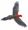 Macaw Wall Plaque by SPI Home