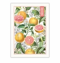 Michel Design Works Pink Grapefruit Kitchen Towel