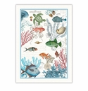 Michel Design Works Sea Life Kitchen Towel