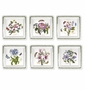 Portmeirion Botanic Garden Square Dinner Plates (Assorted Set of 6)