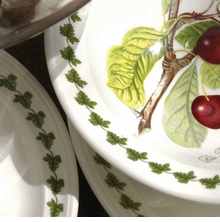 Portmeirion Pomona Classic Dinnerware Collection