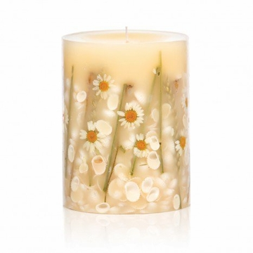 Rosy Rings Beach Daisy 5'' Tall Round Botanical Candle