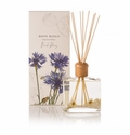 Rosy Rings Beach Daisy Botanical Reed Diffuser