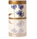 Rosy Rings Signature Tin Beach Daisy Candle