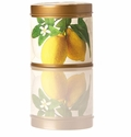 Rosy Rings Signature Tin Lemon Blossom & Lychee Candle