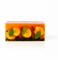 Rosy Rings Spicy Apple 3 Wick Brick Botanical Candle