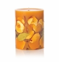 "Rosy Rings Spicy Apple 9.5"" Tall Big Round Botanical Candle"