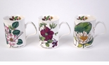 Roy Kirkham Botanical Bone China Mugs - Set Of 3