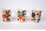 Roy Kirkham Parchment Fruit Mugs (3)
