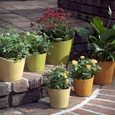 Skyros Designs Garden Pots - 25% Off
