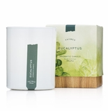 Thymes Eucalyptus Poured Candle