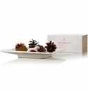 Thymes Frasier Fir Porcelain Potpourri