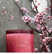 Thymes Mirabelle Plum Collection - Save 20%