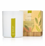 Thymes Olive Leaf Poured Candle