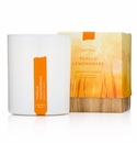 Thymes Tupelo Lemongrass Poured Candle