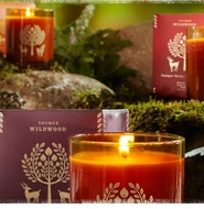 Thymes Wildwood Fragrance Collection - Save 20%