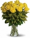 Beautiful Yellow Roses