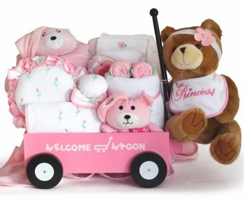 Deluxe Welcome Wagon Baby Gift (Boy or Girl available)